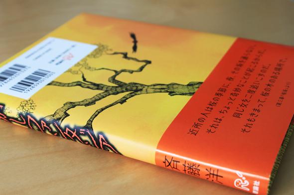 Buch von hinten