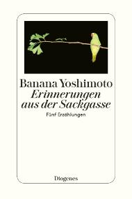 Erinnerungen aus der Sackgasse: Fünf Erzählungen